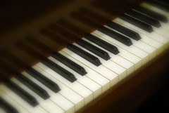 Keys (Lauren Louise Vipond) Tags: music keys piano instrument musicalinstrument pianokeys