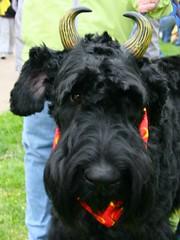 Devilish costume.