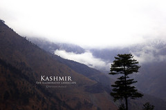 Kashmir (Ebtesam Ahmed) Tags: