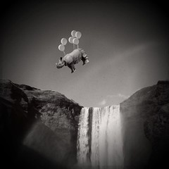 over the rainbow (Janine Graf) Tags: travel bw silly balloons waterfall iceland rainbow surreal rhino artrage whimsical whiterhinoceros skogafoss mobilephotography juxtaposer janine1968 kingcamera iphone4s scratchcam janinegraf squaready
