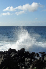 spray (BarryFackler) Tags: ocean sea beach nature water clouds island hawaii polynesia coast waves pacific horizon shoreline wave spray pacificocean shore tropical coastline bigisland splash kapaa seafoam seaspray beachpark hawaiicounty kohalacoast northkohala hawaiiisland 2013 westhawaii kapaabeachpark barryfackler barronfackler