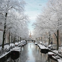 The frosty Bloemgracht of Amsterdam (Bn) Tags: world street trees windows winter light sunset people sun seagulls house snow cold holland heritage church water netherlands dutch amsterdam weather bike corner walking frank anne boat canal cozy cool topf50 colorful day shadows snowy walk seagull sneeuw bikes atmosphere scooter file canals unesco brug snowfall sled topf100 mokum rembrandt meeuw topf200 meeuwen gezellig cafs jordaan sleding slee bycicle nowandthen pakhuis westerkerk wester bloemgracht celcius grachtengordel rondvaartboot 1000km 100faves 50faves raampoort 200faves 1c lekkersluis eerstebloemdwarsstraat