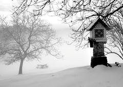regina pacis (Claudia Gaiotto) Tags: trees snow monochrome fog neve nebbia reginapacis