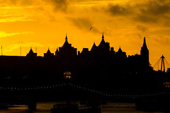 London Fairy Tale (Torsten Reimer) Tags: uk winter light sunset england sky bird london thames fairytale river boats unitedkingdom flight silhouettes embankment blackfriarsbridge whitehallcourt royalhorseguardshotel