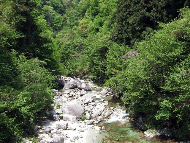 先ほどの吊り橋の上から見た尾白川渓谷。|尾白川渓谷