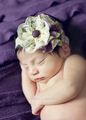 Rykki (Didenze) Tags: portrait baby infant newborn didenze itsybitsyblooms