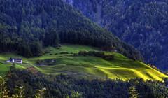 Green spots (Kari Siren) Tags: mountain green grass forest pasture