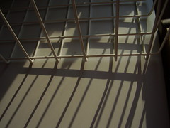 Mar2013 270 Shadows, freezer basket. (monica_meeneghan) Tags: lines shadows shadowlight linescurves