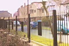 Railings (Alice Horton.) Tags: school cold lensbaby canon outside spring dof mark shift sunny ii edge 5d 80 tilt railings