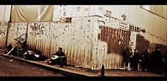 street musician in Galata (Harry Szpilmann) Tags: istanbul streetphotography people music urban portrait musician man retrato musico estambul personne street galata turquia turkey turquie monochrome