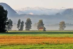 Adrian Vesa Photography (adr.vesa) Tags: swamp hills mountains berg trees barn fog mist morning nabel sunrise panorama bavaria nature bayern
