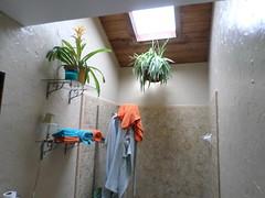 Don't Throw Away The Glass! (irecyclart) Tags: bathroom glass repurposed shelf