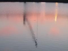 Lever de soleil (Port) (saintmalojmgphotos) Tags: plage saintmalo 35400 35 couch soleil lune coucher mer mare sable brume