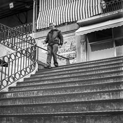 Lines... and lines... (Srgio Miranda) Tags: 120mm 6x6 photography srgiomiranda analogphotography arsat80mm bw blackandwhite delta400 filmisnotdead filmphotography ilford ilforddelta ilforddelta400 kiev88 kiev88cm mediumformat monochrome porto portugal sergiomiranda squarephotography street streetphotography