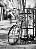Walk in Toronto (Raf Ferreira) Tags: toronto ontario canada mamiya 645 super 80mm f 19 film black white bw rafael peixoto ferreira dof bokeh medium format 120