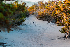 KAZ_4255 (Kaze of Tzertzelos) Tags: chrissi creta gaidouronisi ceder whitesand ierapetra