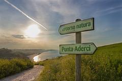 Percorso natura (SDB79) Tags: natura treking sentiero escursione tramonto mare abruzzo vasto puntaaderci campi campagna