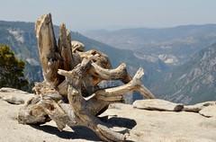 Sentinal Dome, Yosemite (Williams5603) Tags: landscape sierranevada yosemite yosemitevalley halfdome elcapitan california mountains sentinal dome