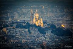 Sacr-Cur de Montmartre (MGness / urbexery.com) Tags: paris france frankreich notredame notre dame church kirche vierge window rose  lenfant mystre des cathdrales sacrcur de montmartre