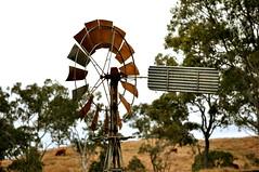 10 foot IBC Geared Simplex windmill; Colinton, Queensland (sarracenia.flava) Tags: colinton queensland australia ibc intercolonial boring company windmill daguilar highway