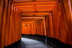 Fushimi Inari shrine (Koku85) Tags: kyoto japan tori heritage shrine religious design architecture