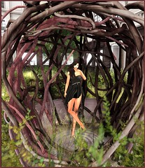 The Nest (Catherine Inaka) Tags: junbug belleza flippant hpmd logo loordesoflondon maitreya sarisari slink truthhair buzz evelineinthebox {anc}
