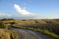 White Road near Medane (Antonio Cinotti ) Tags: landscape paesaggio toscana tuscany italy italia siena hills colline campagnatoscana cretesenesi asciano nikond7100 nikon d7100 rollinghills nikon1685 medane