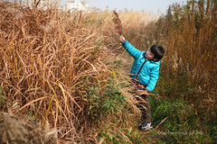 _MG_3708 (baobao ou) Tags: family boy kids funny asia child 52weeks familygetty2011