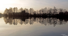 Like A Mirror. ( Dominik J. Photography) Tags: trip trees winter light sunset lake cold reflection nature water canon mirror golden sunny dslr dachau 5dmarkii dominikjakob
