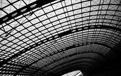 Curves - Berlin Hauptbahnhof (Darren Johnson / iDJ Photography) Tags: shadow blackandwhite bw white black berlin lines station silhouette train germany photography photo blackwhite nikon flickr photographer shadows image photos curves images hauptbahnhof idj bandw nikond5000 idjphotography