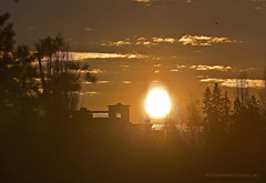 filter sun (Leifskandsen) Tags: camera winter urban sun cold nature norway sunrise canon living december january filter scandinavia brum bekkestua leifskandsen skandsenimages