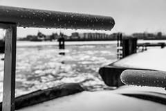 Schneeregen (astielau) Tags: winter eis elbe wetter