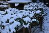 094 (Mayo Takamoto) Tags: winter snow kyoto 京都 冬 kibune kurama 貴船 鞍馬 kihune