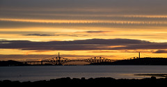Sunrise on the River Forth. (AlbOst) Tags: birds sunrise scotland riverforth forthbridges blackness