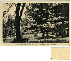 Roncegno Terme, particolare Parco R. Terme (Ecomuseo Valsugana | Croxarie) Tags: parco cartolina terme roncegno parcodelleterme sittoni montibeller roncegnoterme croxarie giuseppesittoni