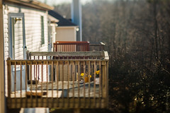 Neighbors have left the building, but they left their junk. Lol (Mesmerizing Images) Tags: street canon lens photography prime miniature photo shift mini telephoto tilt factor wideopen tiltshift primelens 1dmarkiin tse90mmf28 canontse90mmf28 minilife probody tiltshifter 1dseries 13xcrop