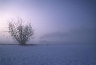 Steam, fog and sunrise
