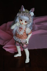 DSC_0630 (Klein crew) Tags: world new cute bunny set shirt ball outfit doll tears kitty ears honey bjd fairyland joint headband bloomers ltf leeke hyrid leekeworld littlefee