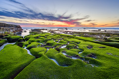 Covered in Green (Justin in SD) Tags: ocean sunset green beach pool rock canon coast moss pacific sandiego dusk tide rocky lajolla pools canon5d tidepools tidepool hdr canon5dmarkiii 5d3 5dmark3