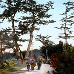 CHILDREN UNDER THE OLD PINES -- A Meiji-Era Salt Print thumbnail