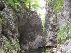 VINTGAR_2005-08-06_0003 (Buba Jonas) Tags: river slovenia bled gorge reka vintgar radovna soteska
