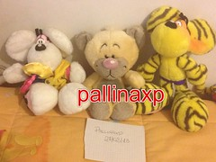 Vendo 20 + spese di spedizione o 10 cadauno (pallinaxp82) Tags: germany tiger vendo diddl pimboli pupazzi tigrato uploaded:by=flickrmobile flickriosapp:filter=nofilter