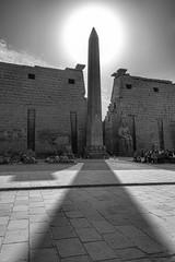 Majesty of Egypt (Christopher.Michel) Tags: christophermichel egypt farhorizons luxor bobbrier mrmummychristophermichel pyramid pyramids giza