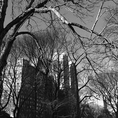 New-York_130311-152.jpg