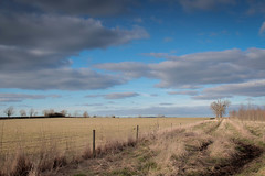 (RachelTosh) Tags: blue trees sky cloud tree water field clouds landscape track darlington milllane
