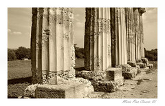 #Foto 19 (Maria Pina Ciancio) Tags: grecia magna colonne tempio antichit metaponto