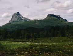 DSC06244 (Morten-Pedersen) Tags: old vacation holiday norway lens cabin focus sony og manual alpha a7 sogn fjordane