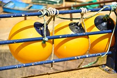 Three Fenders (Nanny Bean) Tags: staithesnyorkshire balloonfenders yellow rope knots railings