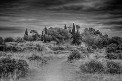 Alien Landscape (John fae Fife) Tags: unreal france noiretblanc monochrome alien languedocroussillon blackandwhite nb ensrune