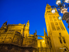 Spain May-June 2016-1277.jpg (bruce.lande) Tags: vowrenewal cathedral church sitges vacation flamenco mosque spain barcelona cava friends history madrid wine granda seville cordoba